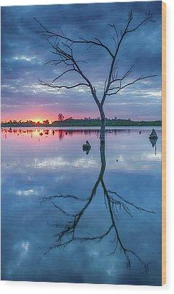 Tree In Silhouette Wood Print by Jae Mishra