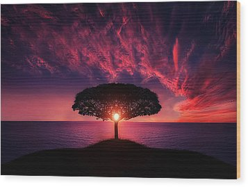 Tree In Sunset Wood Print