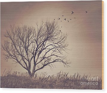 Wood Print featuring the photograph Tree by Juli Scalzi