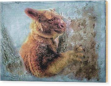 Wood Print featuring the photograph Tree Kangaroo by Wallaroo Images