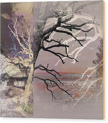 Tree Layers 8 Wood Print by Dorothy Berry-Lound