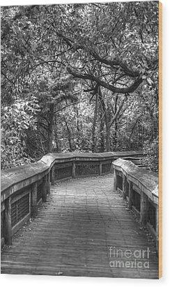 Tree Line Memories Wood Print by Julie Clements