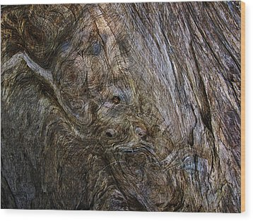Wood Print featuring the photograph Tree Memories # 19 by Ed Hall