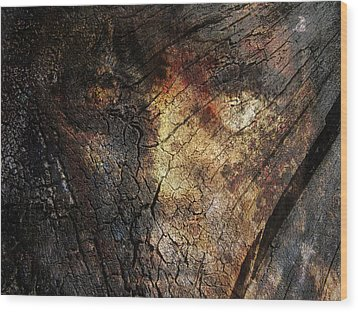 Wood Print featuring the photograph Tree Memories # 21 by Ed Hall