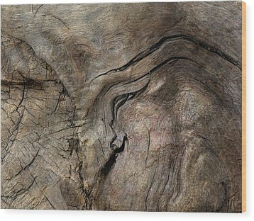 Wood Print featuring the photograph Tree Memories # 23 by Ed Hall