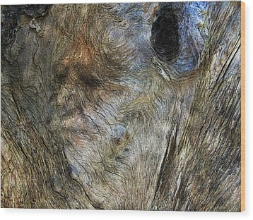 Wood Print featuring the photograph Tree Memories # 25 by Ed Hall