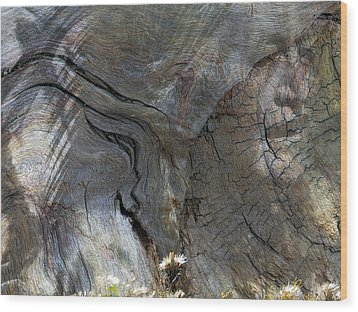 Wood Print featuring the photograph Tree Memories # 28 by Ed Hall
