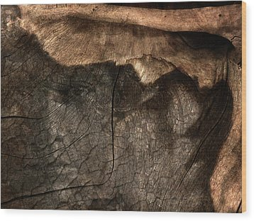 Wood Print featuring the photograph Tree Memories # 29 by Ed Hall