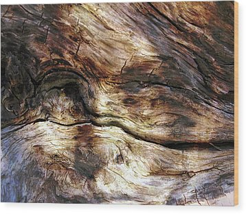 Wood Print featuring the photograph Tree Memories # 30 by Ed Hall