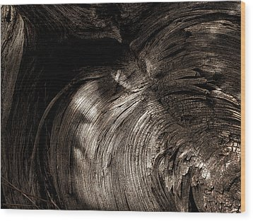 Wood Print featuring the photograph Tree Memories # 31 by Ed Hall