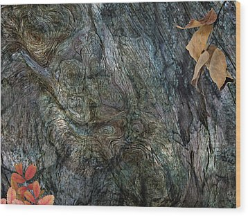 Wood Print featuring the photograph Tree Memories # 33 by Ed Hall