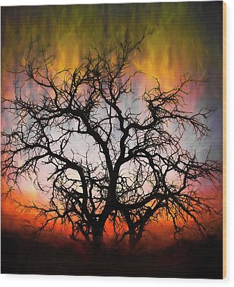 Tree Of Fire Wood Print