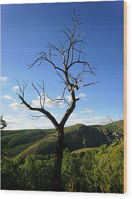 Tree Wood Print by Oliver Johnston