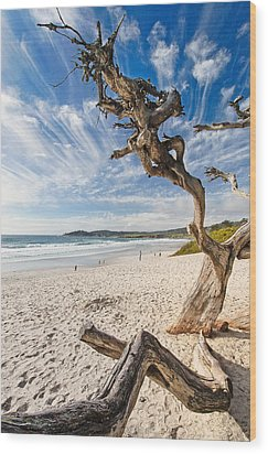Tree On A Beach Carmel By The Sea California Wood Print by George Oze