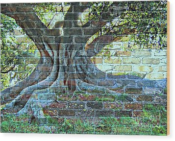 Tree On A Wall Wood Print by Leanne Seymour