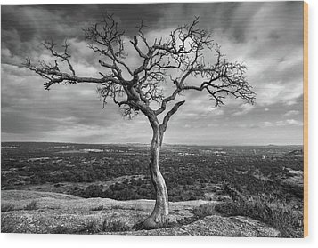 Tree On Enchanted Rock In Black And White Wood Print