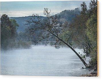 Tree Over Gasconade River Wood Print by Jae Mishra