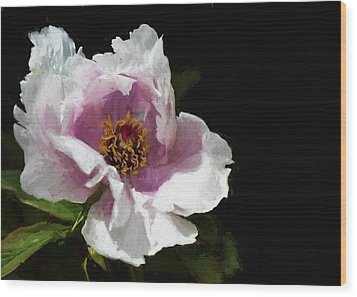 Tree Paeony II Wood Print