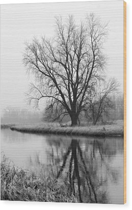 Tree Reflection In The Fox River On A Foggy Day Wood Print
