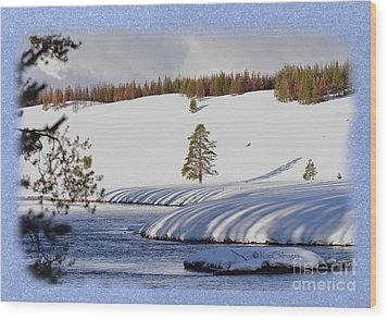 Wood Print featuring the photograph Tree Shadows Along The Madison by Kae Cheatham