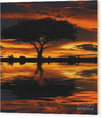 Tree Silhouette And Dramatic Sunset Wood Print by Anna Om