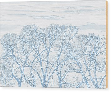 Wood Print featuring the photograph Tree Silhouette Blue by Jennie Marie Schell