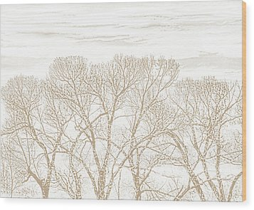 Wood Print featuring the photograph Trees Silhouette Brown by Jennie Marie Schell