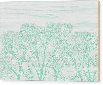 Wood Print featuring the photograph Tree Silhouette Teal by Jennie Marie Schell