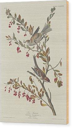 Tree Sparrow Wood Print by Anton Oreshkin
