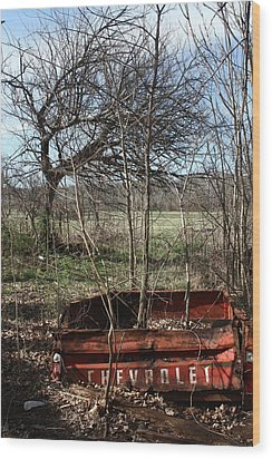 Tree The Usa  In A Chevrolet Wood Print