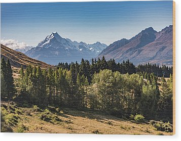 Wood Print featuring the photograph Tree View Of Mt Cook Aoraki by Gary Eason