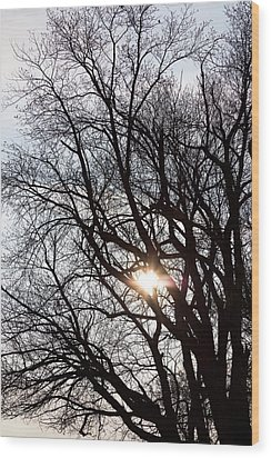 Wood Print featuring the photograph Tree With A Heart by James BO Insogna