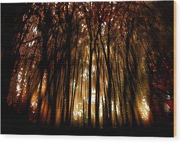 Trees 2 Wood Print by Tony Wood