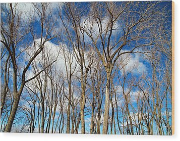 Wood Print featuring the photograph Trees And Clouds by Valentino Visentini