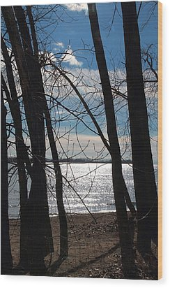 Wood Print featuring the photograph Trees And Lake Reflections by Valentino Visentini