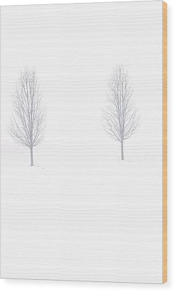 Trees And Snow Wood Print by Daniel Thompson