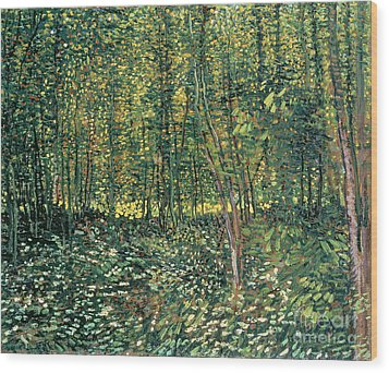 Trees And Undergrowth Wood Print by Vincent Van Gogh
