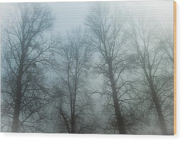 Trees In Mist Wood Print by Tetyana Kokhanets