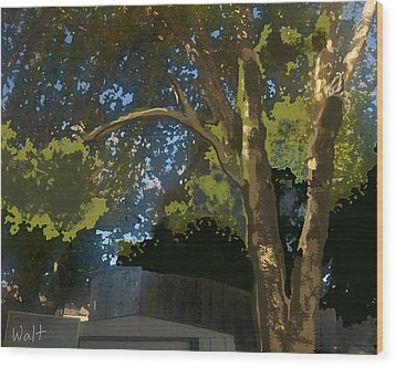 Wood Print featuring the digital art Trees In Park by Walter Chamberlain