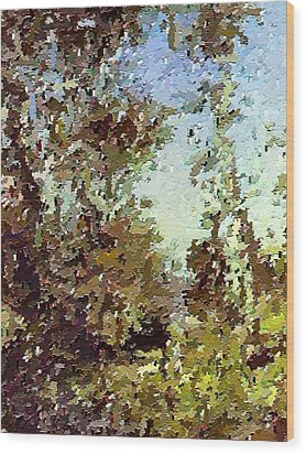 Trees In The Back Yard Wood Print by Don Phillips