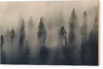 Trees In The Fog Wood Print by Jerry Sodorff