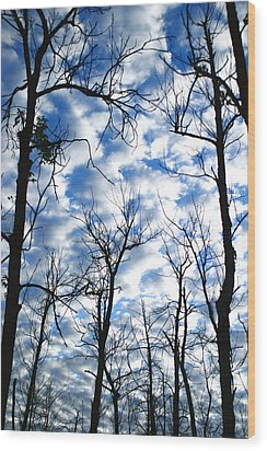 Wood Print featuring the photograph Trees In The Sky by Shari Jardina