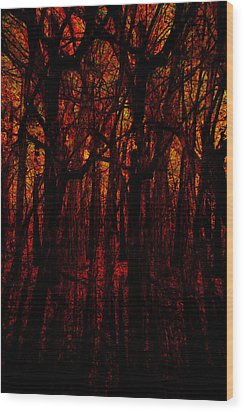 Trees On Fire Wood Print