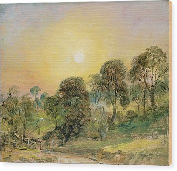 Trees On Hampstead Heath At Sunset Wood Print by John Constable
