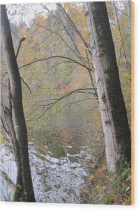 Wood Print featuring the photograph Trees On Lake Padden by Karen Molenaar Terrell