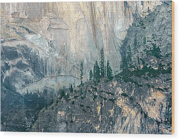 Trees On Ledge Wood Print