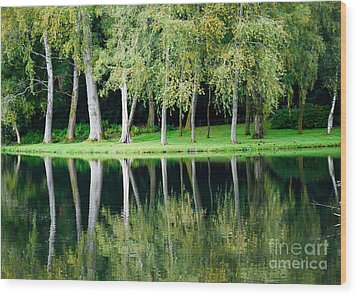 Trees Reflected In Water Wood Print