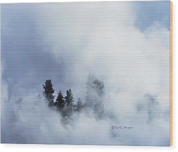 Trees Through Firehole River Mist Wood Print