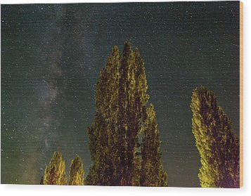 Trees Under The Milky Way On A Starry Night Wood Print