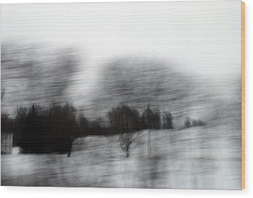 Treescape 2 Wood Print by David Hickey